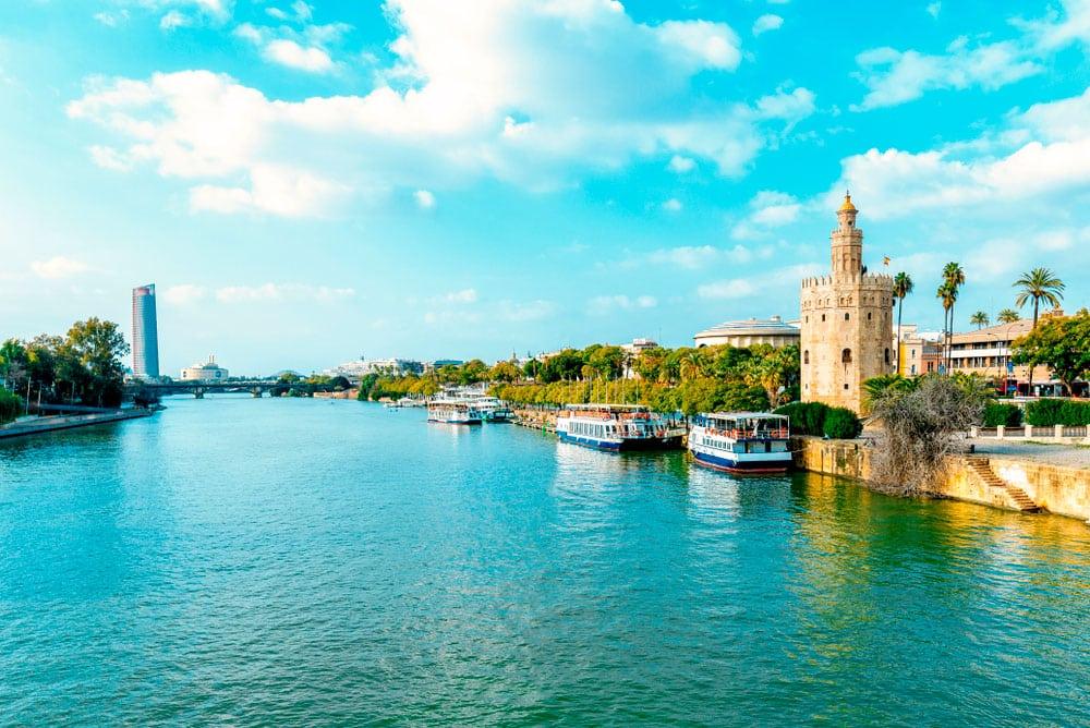 ¿Por qué debes de asistir a la WordCamp Sevilla?